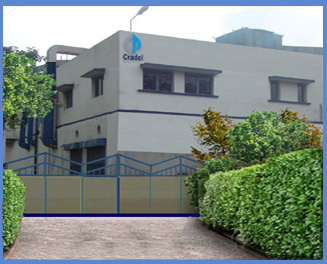 Cradel Pharmaceutical, Contract Manufacturing, Contract Packaging, Pharmaceutical Manufacturers, Packaging Manufacturers, Pharmaceutical Products, Contract Manufacturer, GMP, Soft Gel, Dietary Supplements, Health Supplements, Wholesale Vitamins, Contract Manufacturing near kolkata, Contract Manufacturing bengal, Contract Packaging , Contract Packaging